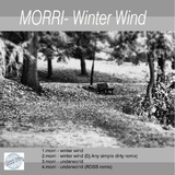 Winter Wind by Morri mp3 download