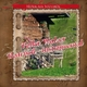 Musik aus Südtirol Polka Walzer Boarisch - Instrumental