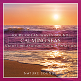 Calming Seas: Hours Ocean Waves Sounds Nature Relaxation Yoga Meditation by Nature Sounds mp3 download