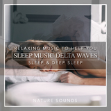 Sleep Music Delta Waves: Relaxing Music to Help you Sleep & Deep Sleep by Nature Sounds mp3 download