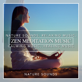 Zen Meditation Music, Nature Sounds, Relaxing Music, Calming Music, Healing Music by Nature Sounds mp3 download