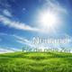 Neuland Für die neue Zeit
