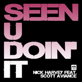 Seen U Doin' It 2K15 by Nick Harvey feat. Scott Aviance mp3 download
