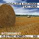 Nogales & Kuchinke Feat.Tania Bittersweet