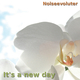 Noiseevoluter It's a New Day