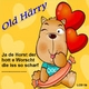 Old Härry Ja De Horst