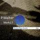 P.walter Work 17