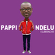 Pappi Ndelu I Surrender
