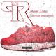 Pascal Rolay De rode schoentjes
