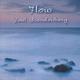 Paul Brandenberg Flow