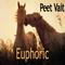 Euphoric by Peet Vait mp3 downloads