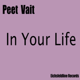 In Your Life  by Peet Vait mp3 download