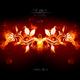 Pete Lukas & Igness Audie(Manu3l Remix)