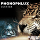 Phonophlux - Cluster