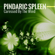 Pindaric Spleen - Caressed by the Wind