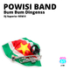 Powisi Band Bum Bum Dingenss(DJ Superior Remix)