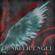 Projekt Phönix Dunkler Engel
