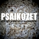 Psaikozet - Instrumentale Momente(Gesamtaufnahmen)