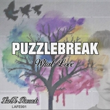 What Love by Puzzlebreak mp3 download