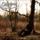 Quirinus The Decision Tree