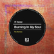 R.Varez Burning in My Soul - The Remixes