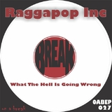 What the Hell Is Going Wrong by Raggapop Inc mp3 download