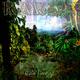 Rawar Rain Forest