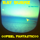 Ray Burnz Feel Fantastic