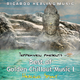 Ricardo M Tepperwein presents: Best of Golden Chillout-Music, Vol.1 (Healing Spirit)