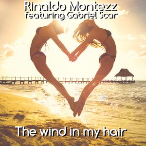 Rinaldo Montezz feat. Gabriel Scar - The Wind in My Hair (Dmn Records)