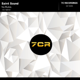 No Rules by Saint Sound mp3 download