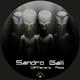 Sandro Galli  Different Acid