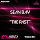 Sean Bay The Past