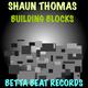 Shaun Thomas Building Blocks
