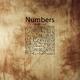 Shurko Love Numbers