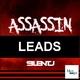 Silent J Assassin Leads