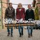 Sitte-Zöllner Trio Drei Geschwister und das Schicksal ihrer Band