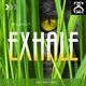 Skillshuut Exhale(432 Hertz Mix)