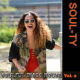 Soulful Disco House, Vol. 2 by Soul-Ty mp3 download