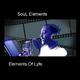 Soul Elements Elements of Lyfe