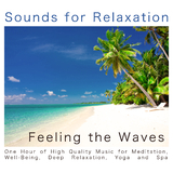 Feeling the Waves(One Hour of High Quality Music for Meditation, Well-Being, Deep Relaxation, Yoga and Spa) by Sounds for Relaxation mp3 download