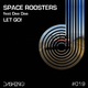 Space Roosters feat. Dee Dee Let Go