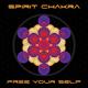 Spirit Chakra Free Your Self