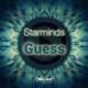 Starminds Guess