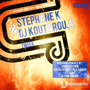 Stephane K & Dj Koutarou.A - Tweek (Undergroovy Productions)