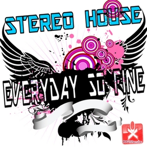 Stereo House - Everyday so Fine (Rgmusic Records)