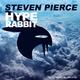 Steven Pierce Hype Rabbit