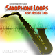 Syntheticsax - Saxophone Loops for House DJs