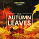 T.c.c. Autumn Leaves