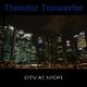 Theodor Tonwerfer City At Night